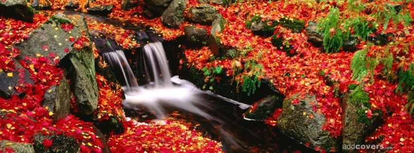 ... Photos - Free Fall Facebook Covers For Timeline Pretty Autumn Season